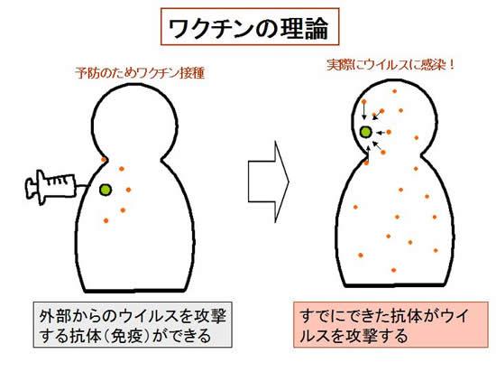 インフルエンザ 予防 接種 必要 性
